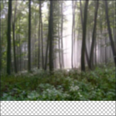 Девушка-эльф в магическом лесу