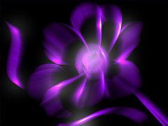 Сказочный цветок в фиолетовом цвете