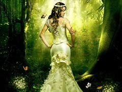 Фотоманипуляция «Зачарованный лес»