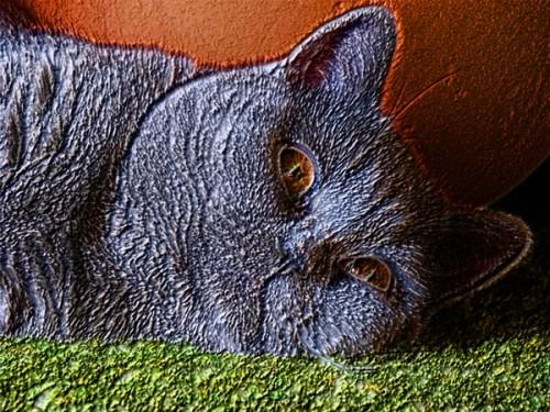 Эффект Carpet в Photoshop