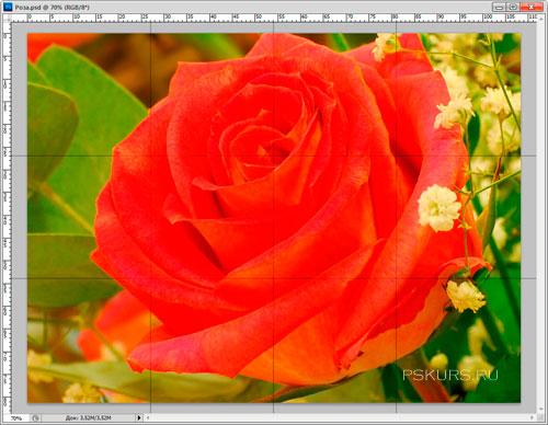 Красочный фотоколлаж