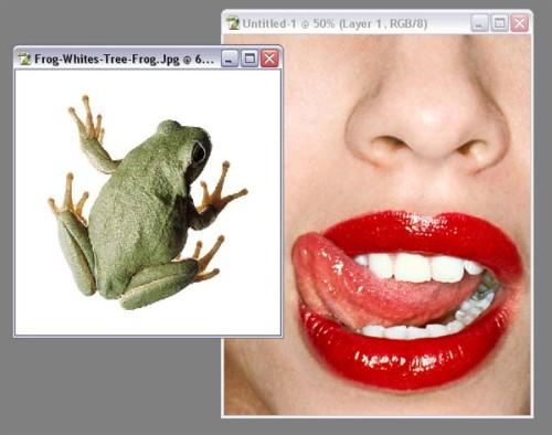 Язык в форме лягушки