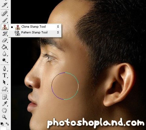 кисти кожа для фотошопа: