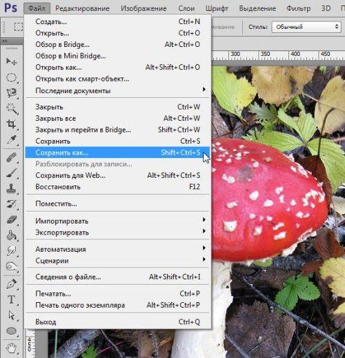 Как уменьшить вес фотографии в Фотошоп