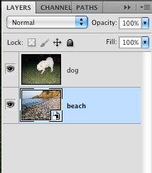 Вырезаем пушистый объект в Photoshop