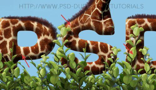 Текст из кожи жирафа